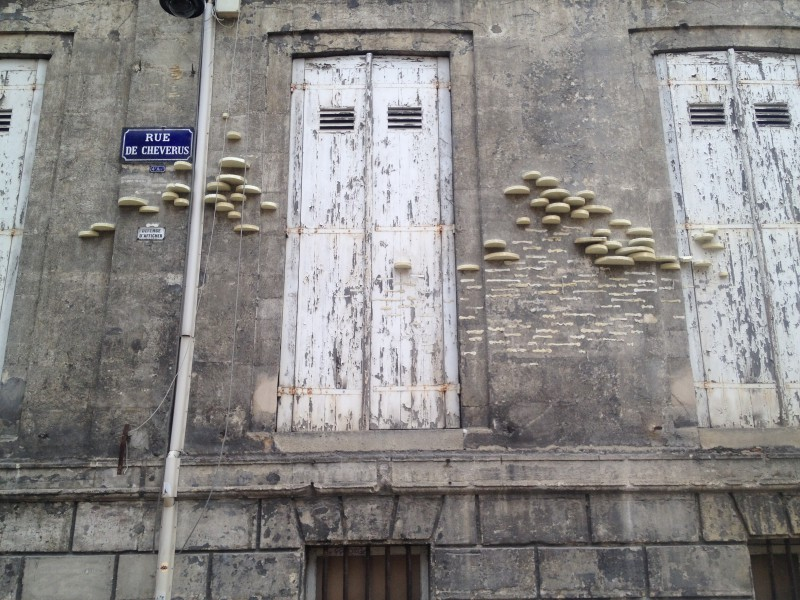 Bordeaux, architecture, Bracket fungus (artificial)