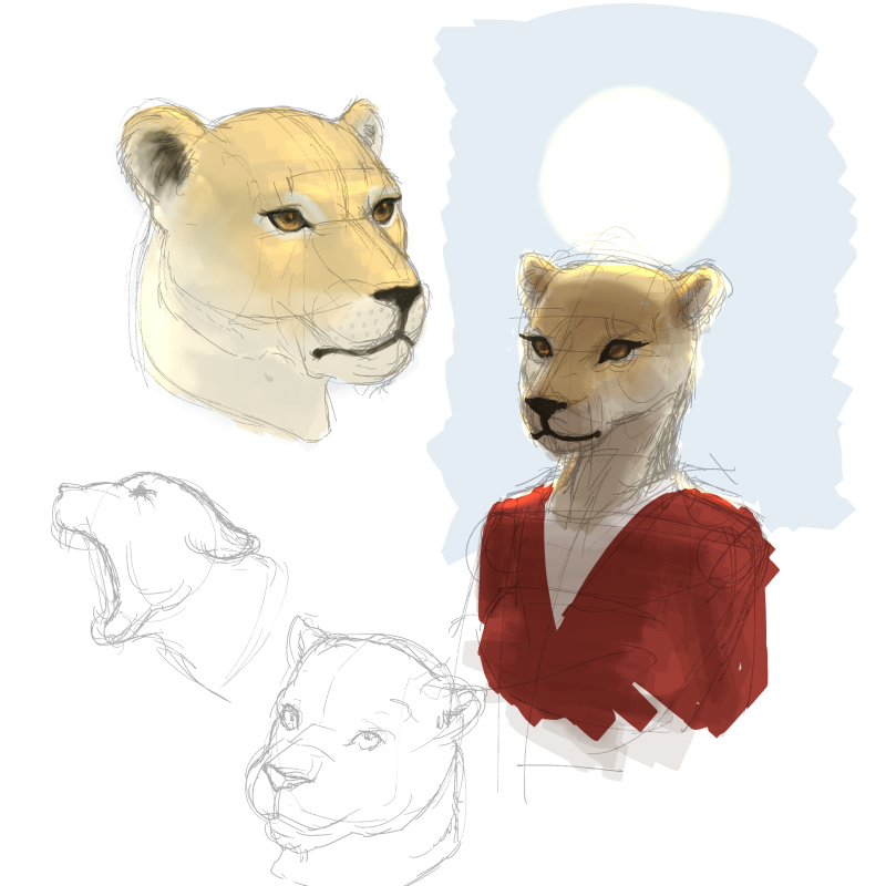 lion_studies